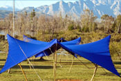 Royal Blue Tent